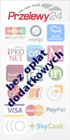 Metody i czasy realizacji płatności w LAKIER-SHOP.PL